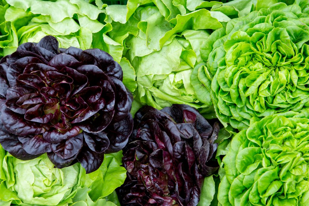 salat_kiste_markt